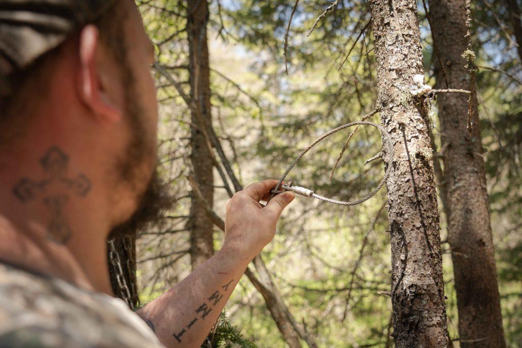 Se nourrir en forêt